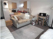 1 Bed Flats And Apartments in Headstone property L2L2445-340