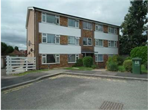 1 Bed Flats And Apartments in Headstone property L2L2445-292