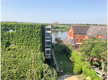 2 Bed Flats And Apartments in Castelnau property L2L29-571