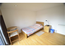 1 Bed Student in Red Hill property L2L4562-143