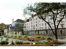 2 Bed Flats And Apartments in Euston property L2L595-100