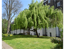 1 Bed Flats And Apartments in Little Venice property L2L746-202