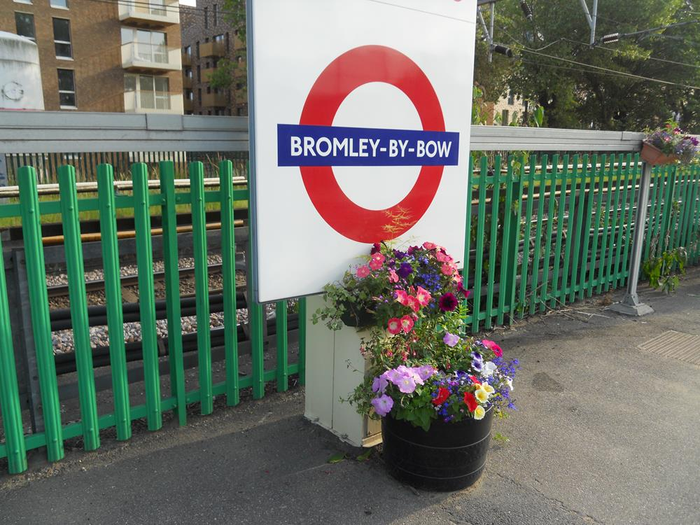 Train, Buses and Transportation Options in Bromley
